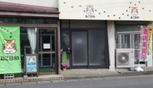 所沢にある猫カフェ②:ねこ日和